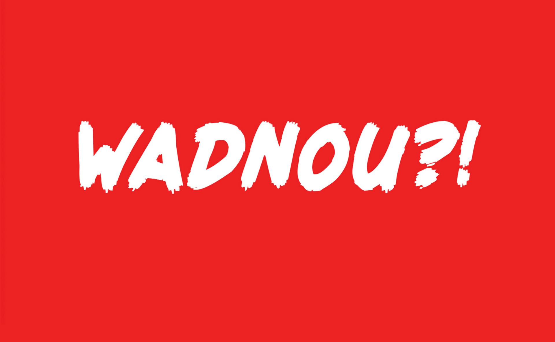 leconcepteur_tamara_pruis_wadnou_logo_design