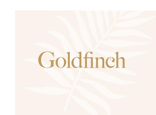 Goldfinch Story Studio